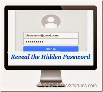 View hidden password